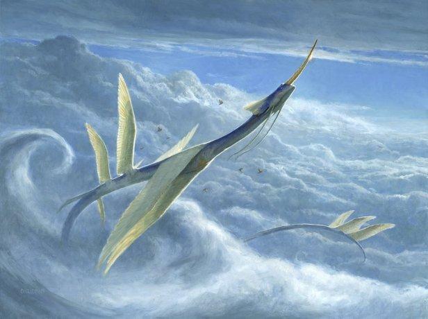 Yorion, Sky Nomad ART